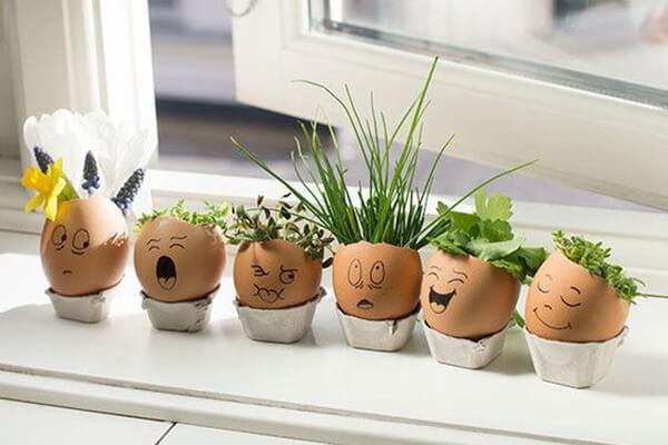 Haarige Eierköpfe